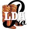 Cours ONLINE  LDA Pros Mar 2021