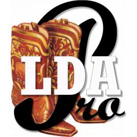 Course ONLINE  LDA Pros Mar 2021