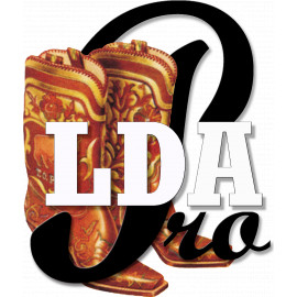 Curso ONLINE  LDA Pros Mar 2021